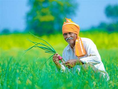 Agriculture Farmer Indian Pandemic Hope Sector Beacon