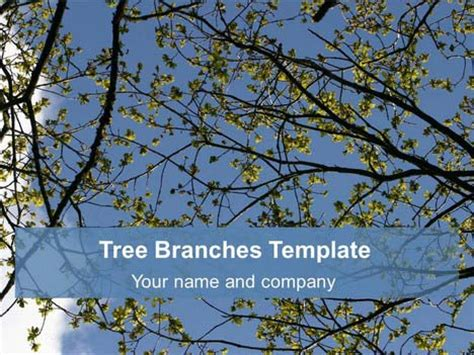 tree branches background template