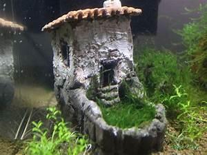 Aquarium Deko Ideen : 78 best einzigartige deko ideen aquarium images on ~ Lizthompson.info Haus und Dekorationen