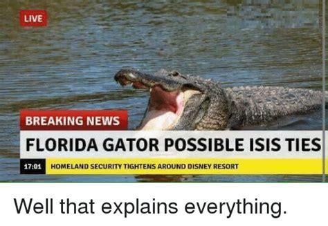 Gator Meme - live breaking news florida gator possible isis ties homeland security tightens around disney