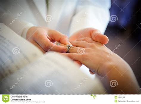 wedding rings exchange royalty free stock images image