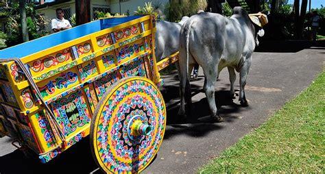 Las carretas de Costa Rica National Geographic en Español