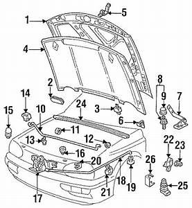 Volkswagen Cabrio Hood Prop Rod Clip  Corrado