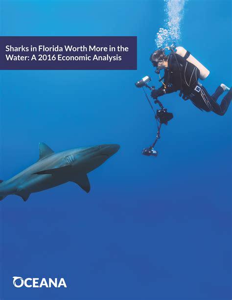 shark diving florida impact usa economic bering chukchi oceana brochure seas beaufort ecological atlas march