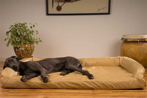 large beds the 19 best beds for large dogs
