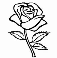 Best Rose Flower Drawing Ideas And Images On Bing Find What You
