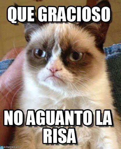 gracioso grumpy cat meme  memegen