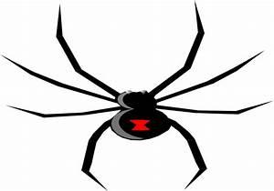 Black Widow Spider Drawing - ClipArt Best