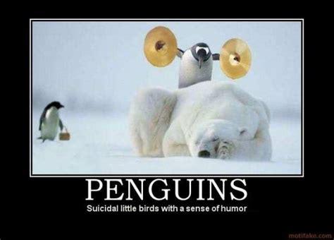 Penguin Memes - 10 best demotivational posters involving animals