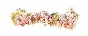 transparent flower crown on Tumblr