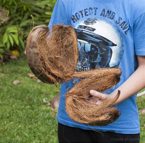 jujube en cuisine comment ouvrir une noix de coco jujube en cuisine