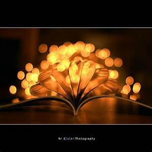 40 Wonderful Examples of Bokeh Photography   Designbeep