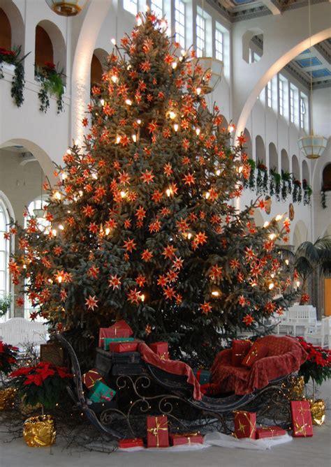 weihnachtsbaum de weihnachtsbaum kaufen so finden sie den perfekten baum