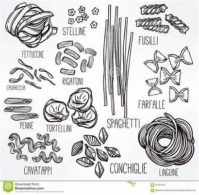 Pasta Hand Drawn Illustration Types Different Line