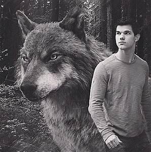 Jacob Black. #Wolf | Twilight Saga. | Pinterest