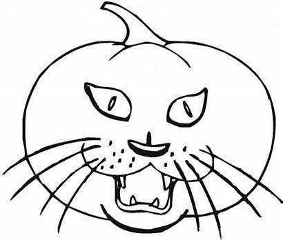 Coloring Halloween Pumpkin Drawing Printable Cat Sheets