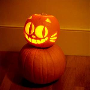 6 Cat-Themed Jack-o-Lantern Ideas for You and Your Kids ...