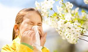 How Acupuncture Can Help With Hayfever