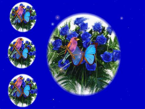 Animated Roses Wallpaper - animated roses and butterflies butterfly wallpapers