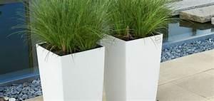 Plante D Extérieur En Pot : plante pour pot exterieur resistant au gel pivoine etc ~ Teatrodelosmanantiales.com Idées de Décoration