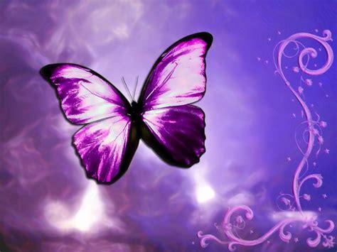 Sweet Dreams Nursery Products by Butterflies 1 2 Jpg Photo By Hannia Skelleton Photobucket