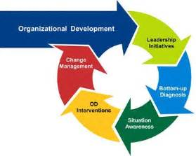 What is organizational development? Definition and meaning