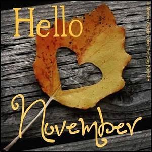 Happy November | Fall | Pinterest
