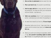 1000+ images ab... Shane Dog Quotes