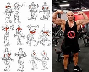 Best Bodybuilding Program  Guide 2020