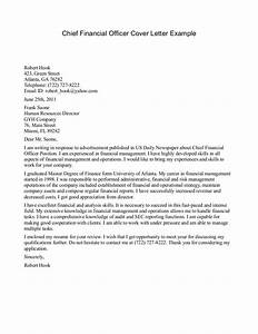 example of a professional letter to cfo perfect resume With cover letter for cfo position
