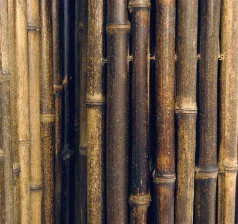 cloture en bambou cl 244 ture en bambou pour une touche orientale dans le jardin