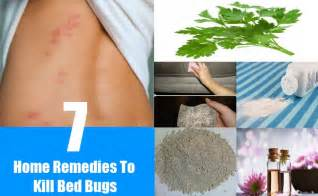 How To Kill Bed Bugs Home Remedies