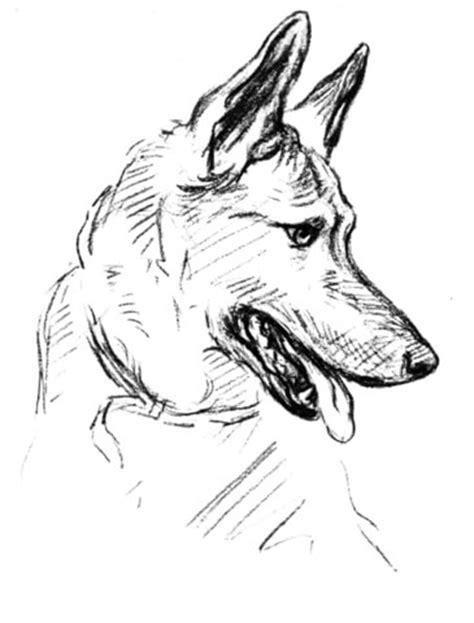 german shepherd dog coloring page supercoloringcom