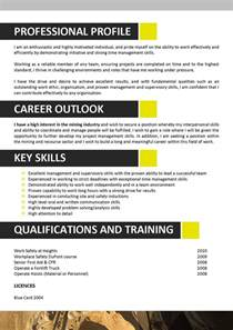 resume skills for accounting jobs we can help with professional resume writing resume templates selection criteria writing