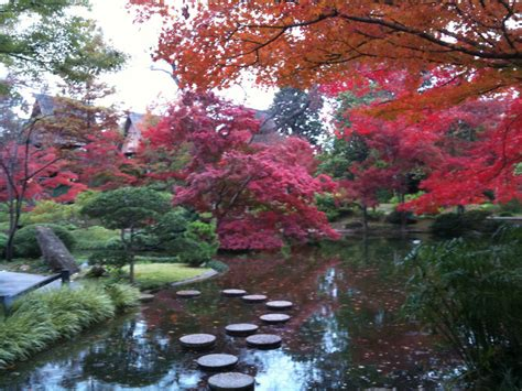 japanese gardens fort worth botanic garden by vostro