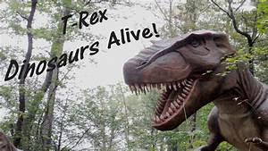 T Rex - Dinosuars Alive  Tyrannosaurus Rex