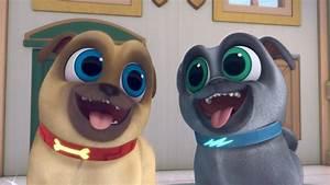 Puppy Dog Pals - Rolly, Bingo, & Hissy on Disney Junior