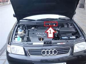 Location Audi A3 : audi a3 2000 2003 kde je ~ Medecine-chirurgie-esthetiques.com Avis de Voitures