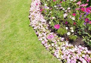 Garten Im Herbst : bl tenpracht von fr hjahr bis herbst wie es funktioniert zeigt ihnen obi ~ Whattoseeinmadrid.com Haus und Dekorationen
