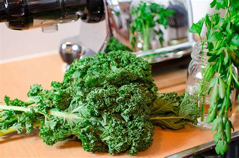 kale leaves juice workout thoroughly juicers dirt adding remove better cut any them before