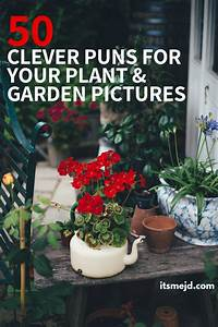 50 Funny Plant And Garden Puns That Are Too Clever For