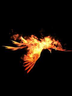 phoenix   clip art  clip art  clipart library