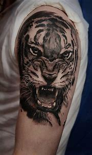 15+ Angry Tiger Tattoo Designs and Ideas   PetPress