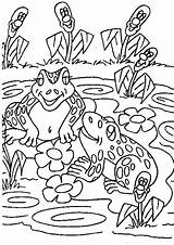 Oat Meal Coloring Pages Template Frogs sketch template