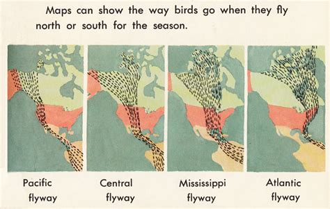 how we use maps and globes an illustrated guide from 1968
