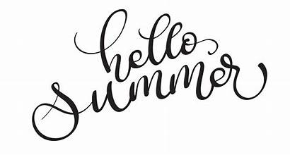 Hello Summer Text Background Lettering Calligraphy Vector