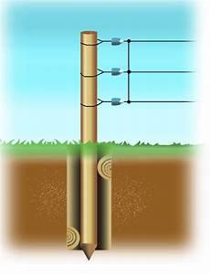 Piquet De Cloture Bois Acacia : piquet bois rond point pour angle diam 16 18 mm patura ~ Dailycaller-alerts.com Idées de Décoration