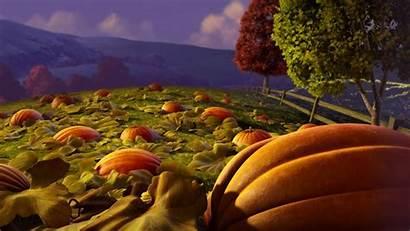 Pumpkin Patch Halloween Autumn Wallpapers Wide Mobile