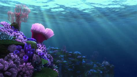 finding nemo backgrounds  images