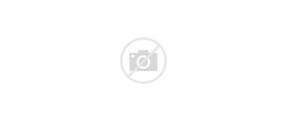 Plus Ferrari Carrera Panamericana 1954 1st